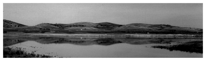 Laguna de Gallocanta 1992